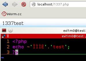 PHP中使用按位取反(~)函数创建后门,编码变异类后门!免杀绕过防火墙